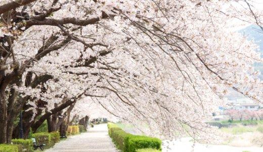 【感動の嵐】おすすめの卒業ソング10選!泣ける合唱曲ランキング!