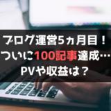 ブログ,100記事,5ヵ月目,PV,収益