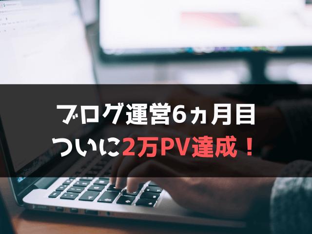 【ブログ運営6ヵ月目】2万PV達成!アクセスの変化や収益を公開!