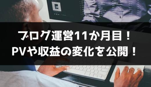 【ブログ運営11ヵ月目】PVや収益の報告!あと、2020年はもう日本にいないかもしれない